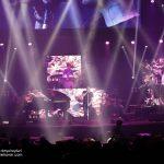 کنسرت زانیار