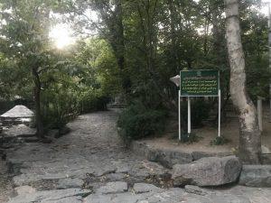 ورود ساز به پارک ها آزاد شد