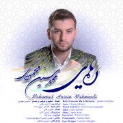 محمد حسین محمودی رهایی