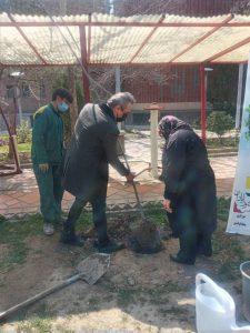 کاشتن درخت به یاد تورج شعبانخانی